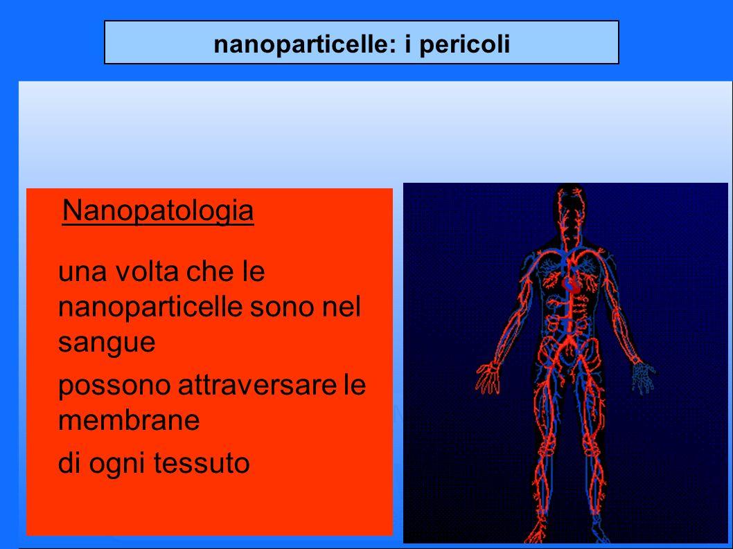 nanoparticelle: i pericoli