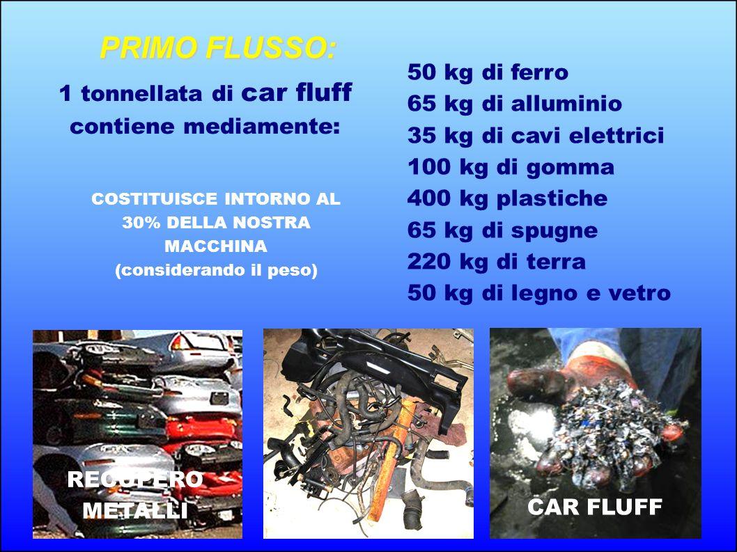 PRIMO FLUSSO: 50 kg di ferro
