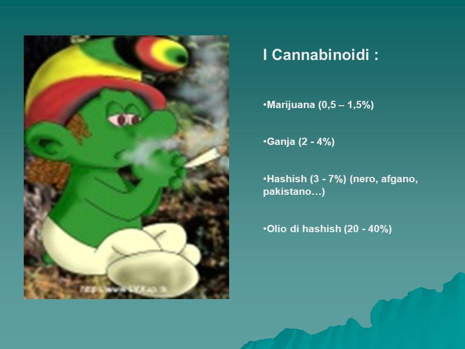 I Cannabinoidi : Marijuana (0,5 – 1,5%) Ganja (2 - 4%)
