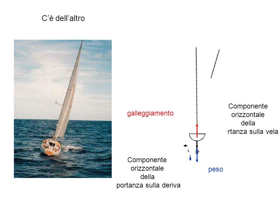 C'è dell'altro galleggiamento portanza sulla vela Componente