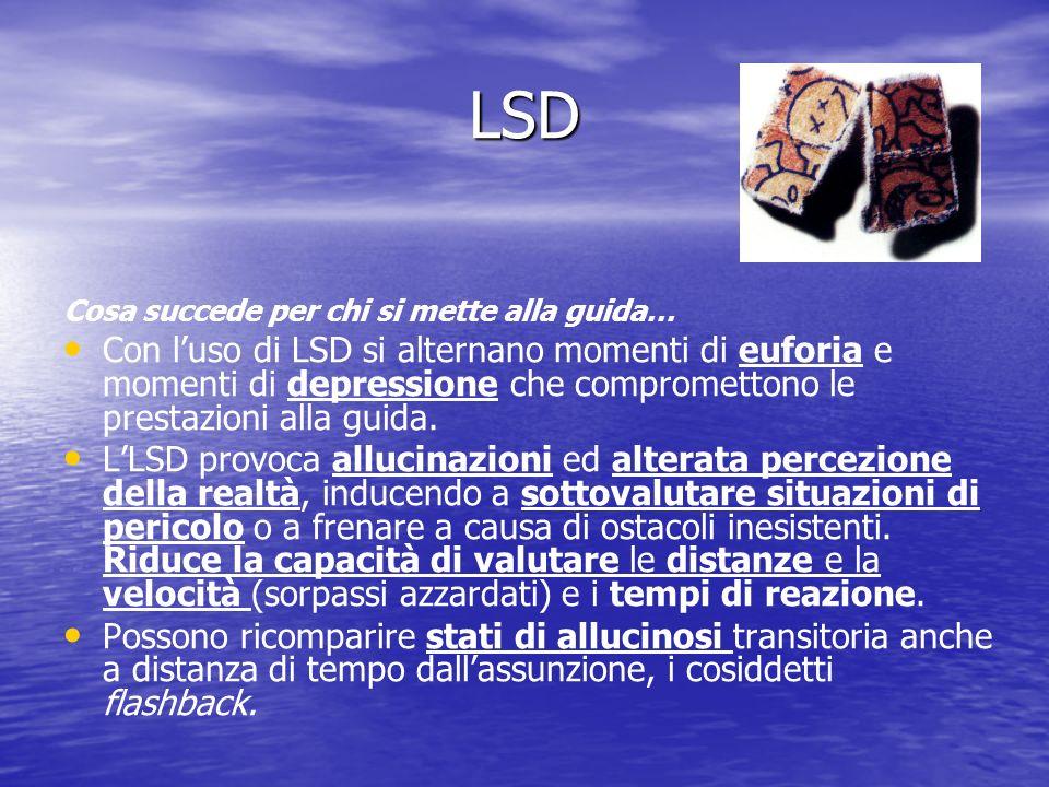 LSD Cosa succede per chi si mette alla guida…