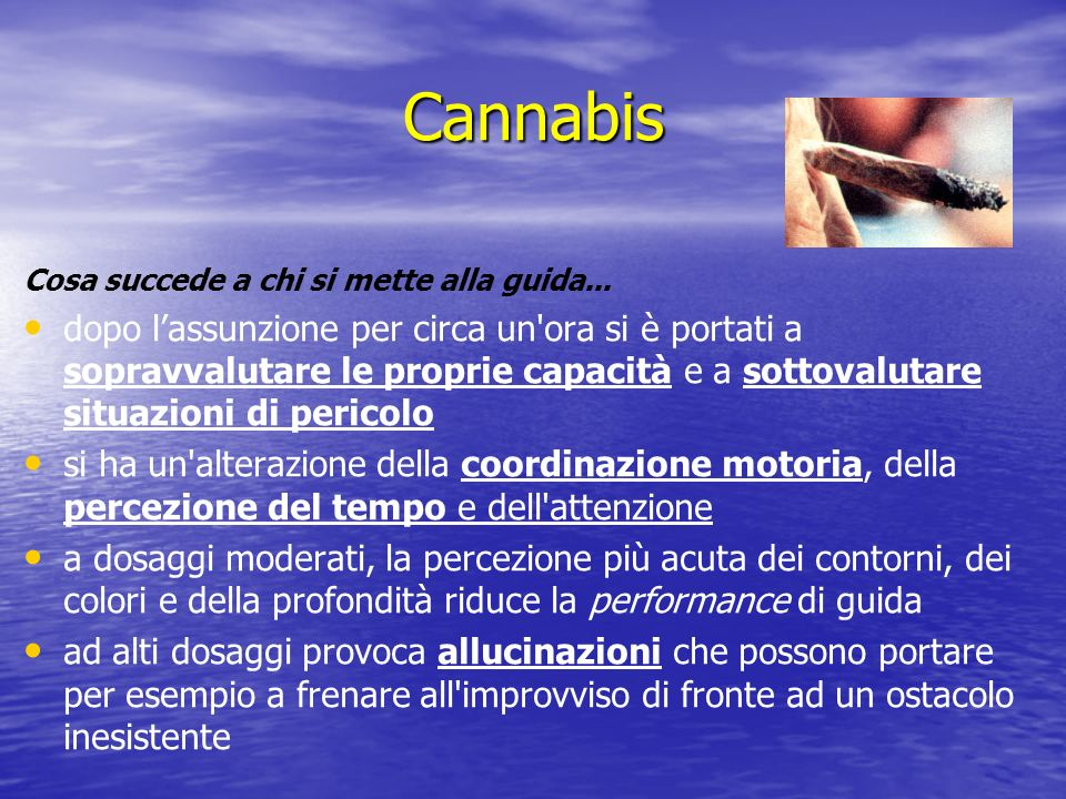 CannabisCosa succede a chi si mette alla guida...