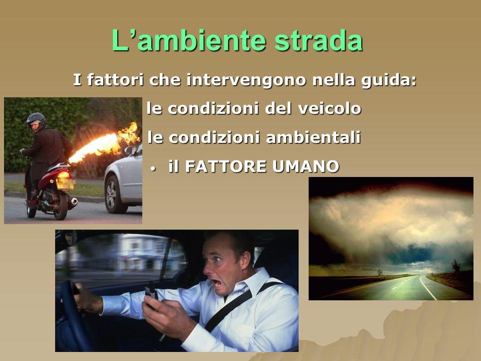 L'ambiente strada I fattori che intervengono nella guida: