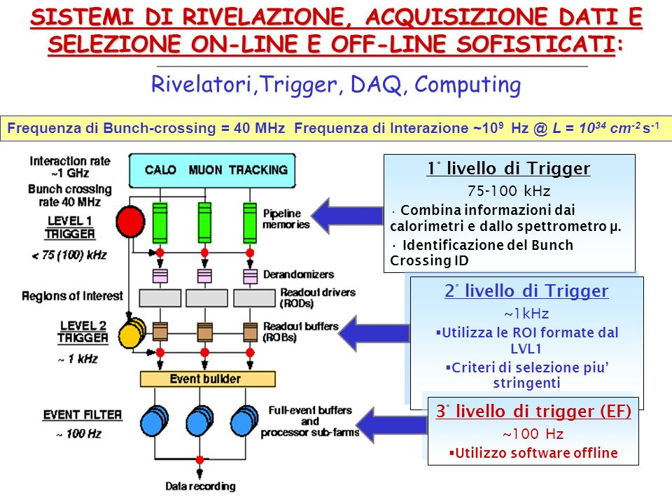 Rivelatori,Trigger, DAQ, Computing