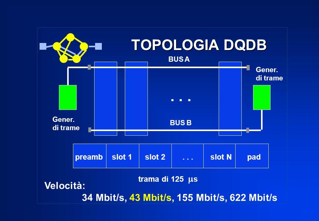 . . . TOPOLOGIA DQDB Velocità: