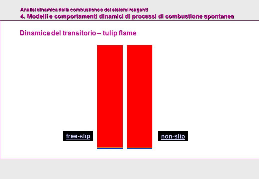 Dinamica del transitorio – tulip flame