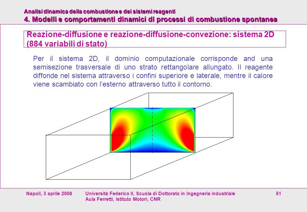 Reazione-diffusione e reazione-diffusione-convezione: sistema 2D (884 variabili di stato)