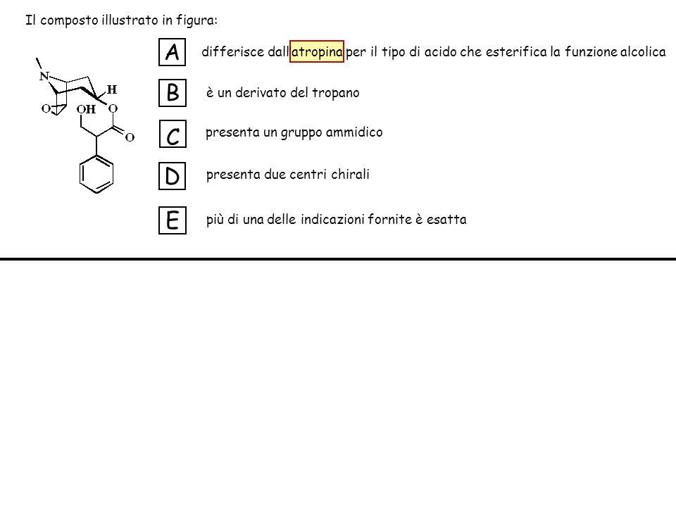 A B C D E Il composto illustrato in figura: