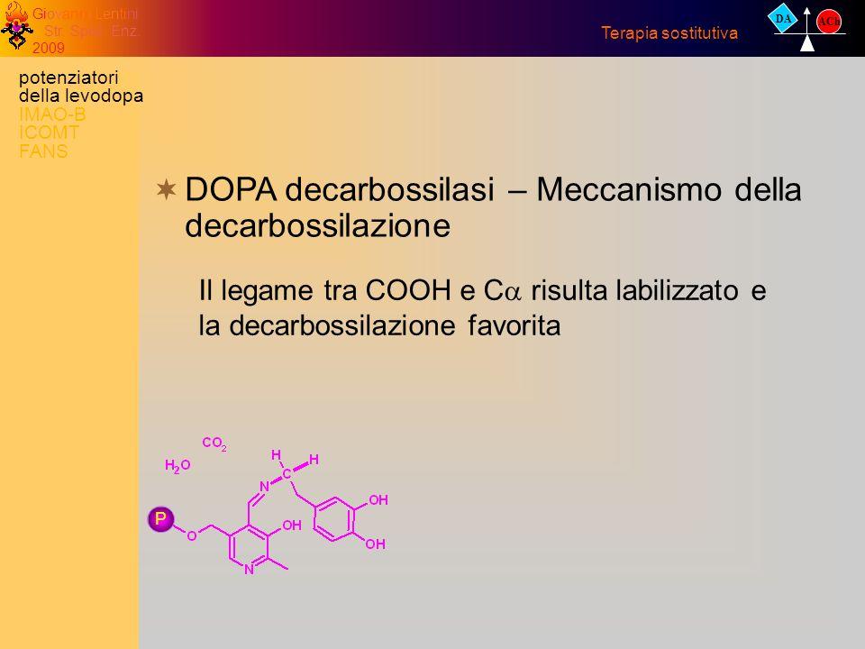 DOPA decarbossilasi – Meccanismo della decarbossilazione