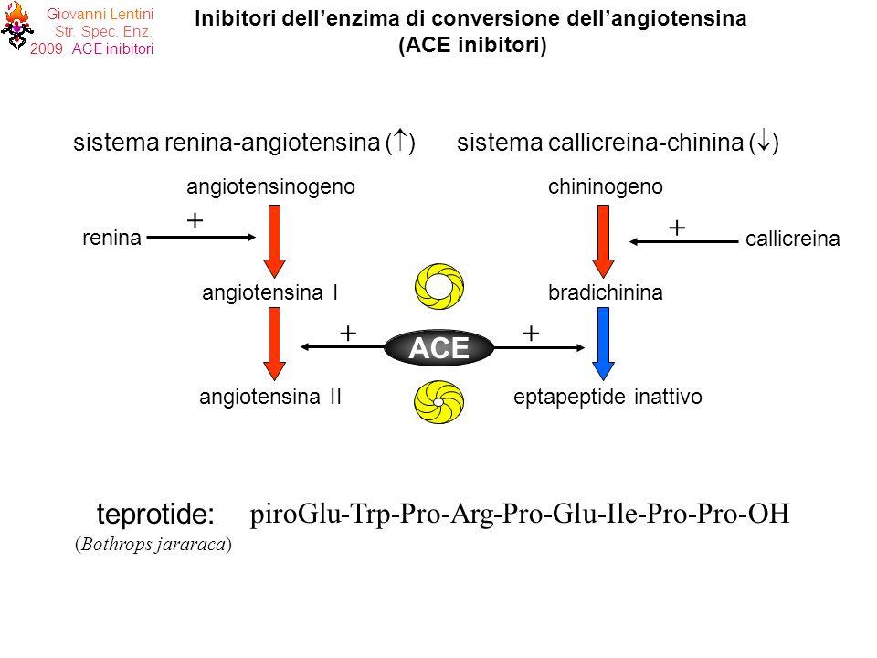 Inibitori dell'enzima di conversione dell'angiotensina