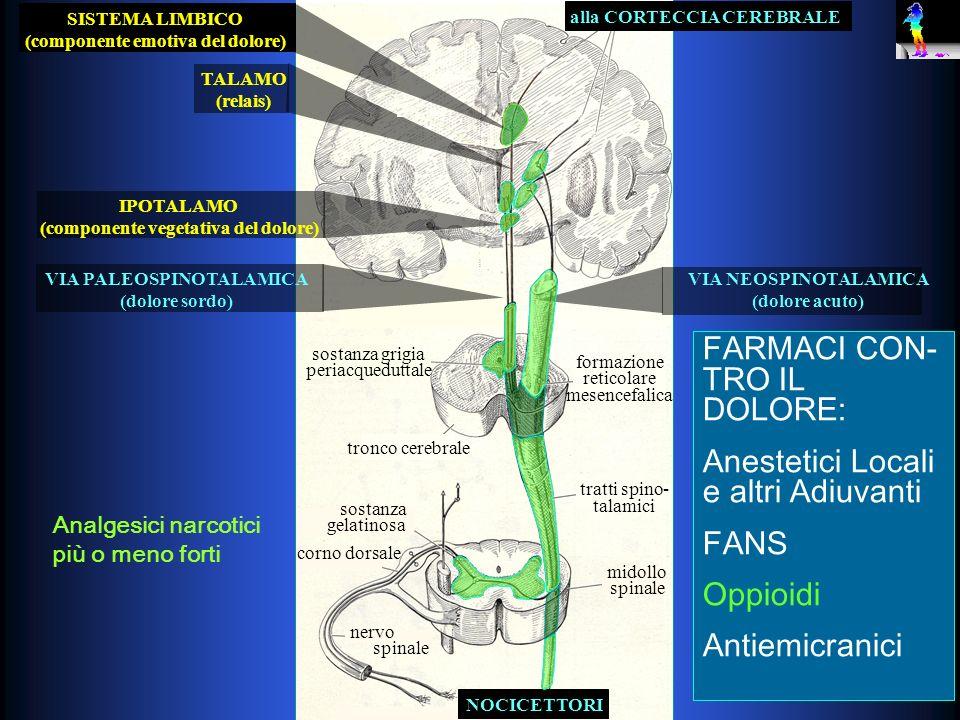 FARMACI CON-TRO IL DOLORE: Anestetici Locali e altri Adiuvanti FANS