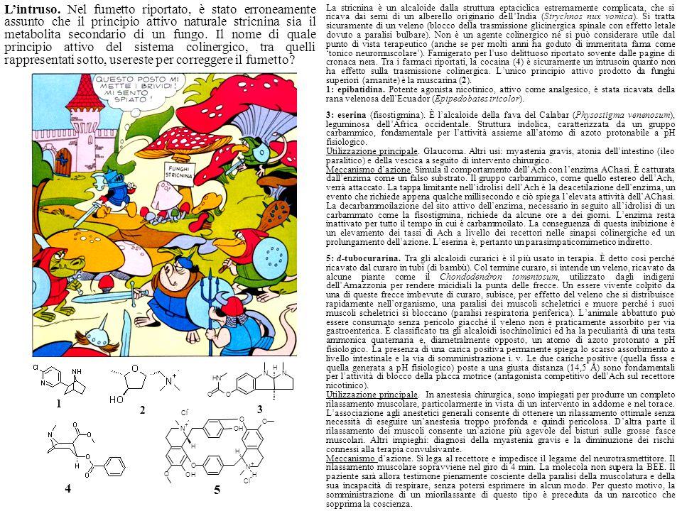 L'intruso. Nel fumetto riportato, è stato erroneamente assunto che il principio attivo naturale stricnina sia il metabolita secondario di un fungo. Il nome di quale principio attivo del sistema colinergico, tra quelli rappresentati sotto, usereste per correggere il fumetto