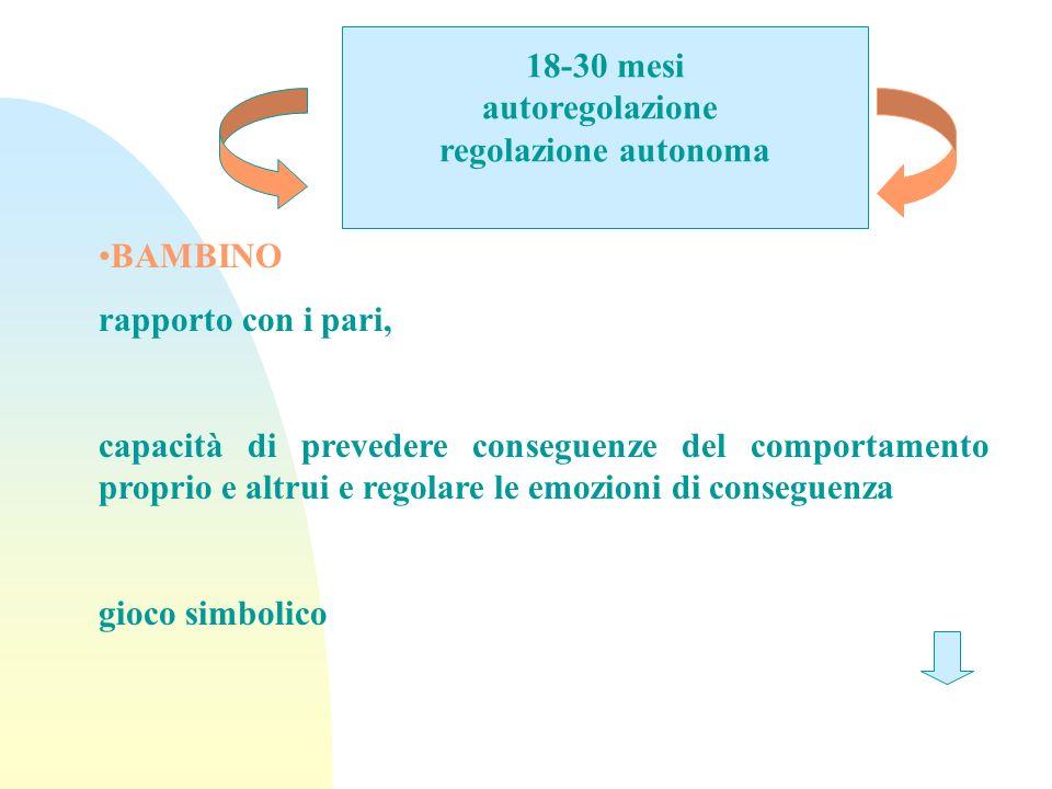 18-30 mesi autoregolazione. regolazione autonoma. BAMBINO. rapporto con i pari,