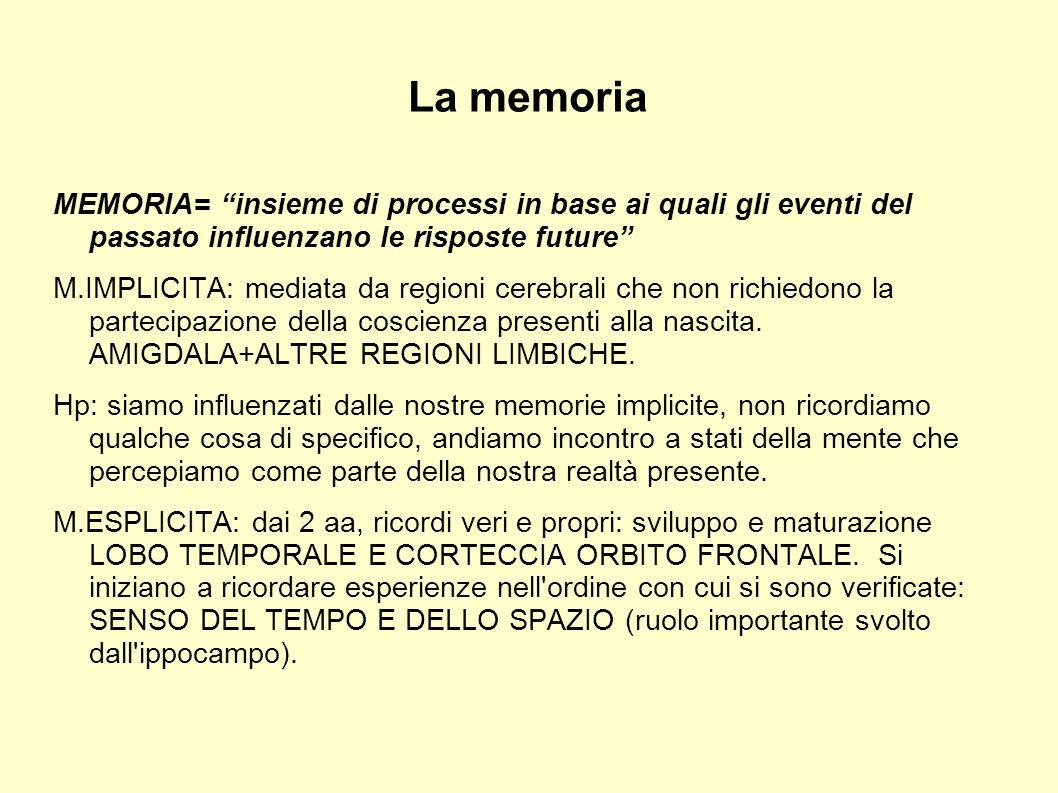 La memoria MEMORIA= insieme di processi in base ai quali gli eventi del passato influenzano le risposte future