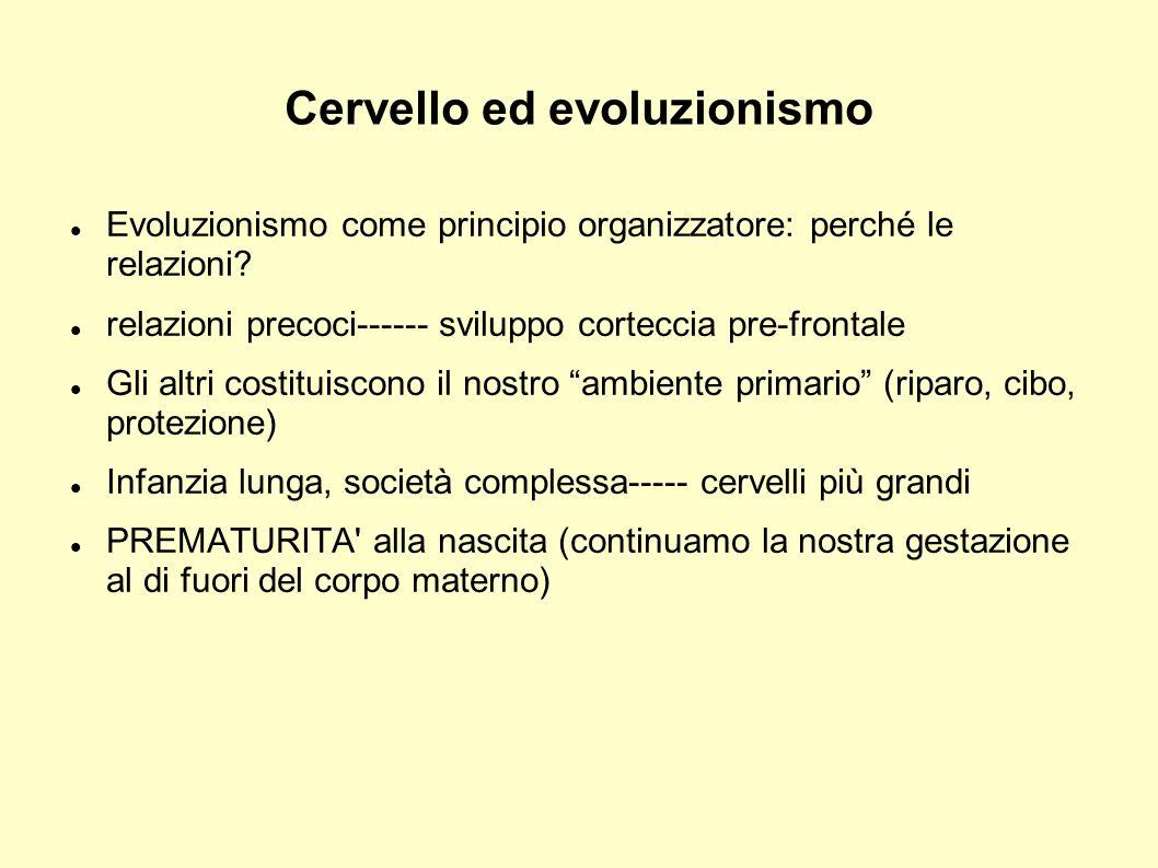 Cervello ed evoluzionismo