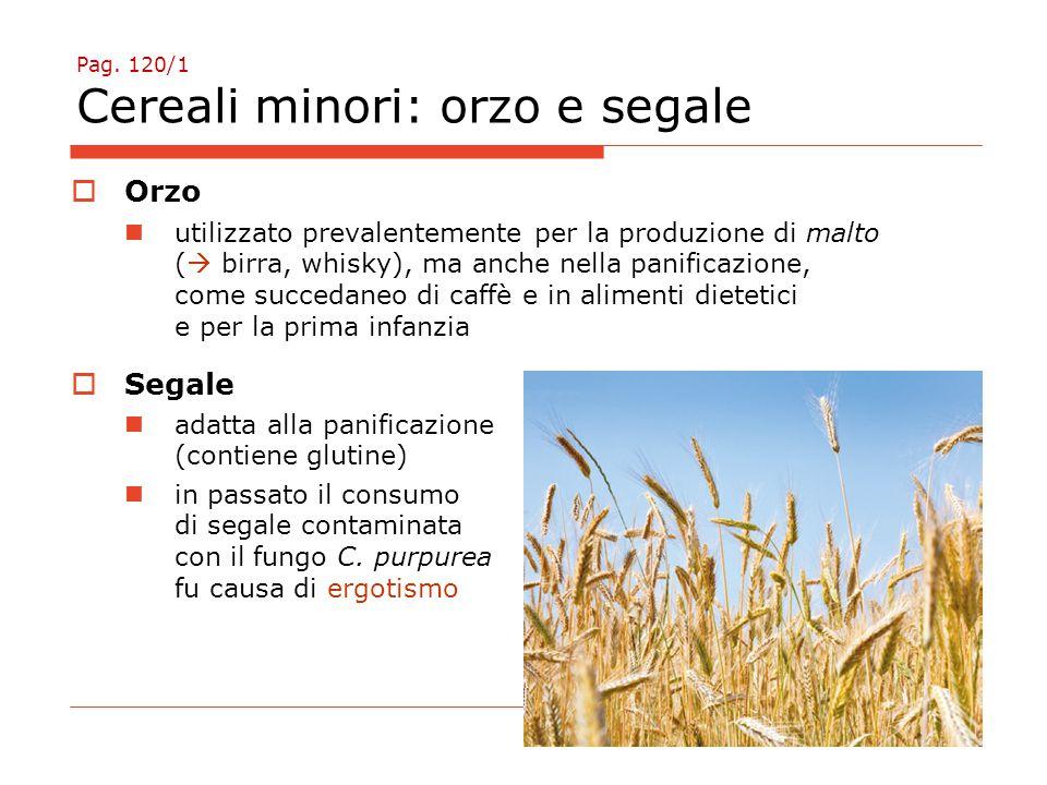 Pag. 120/1 Cereali minori: orzo e segale