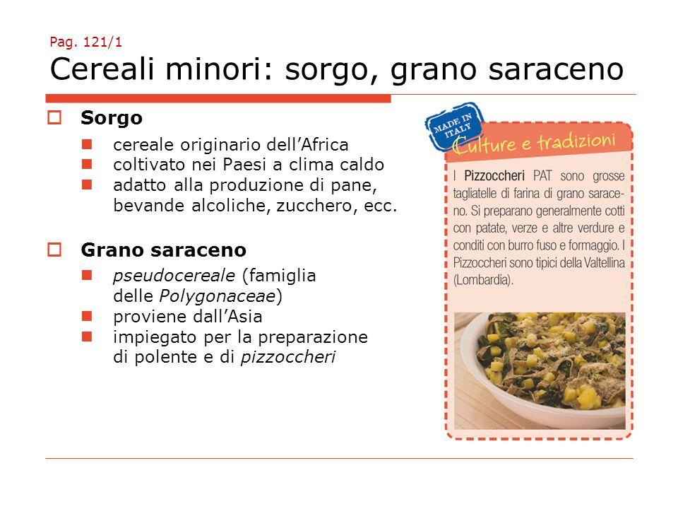 Pag. 121/1 Cereali minori: sorgo, grano saraceno
