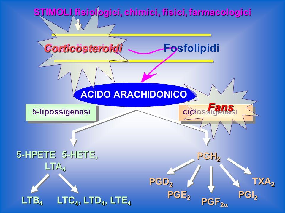 Corticosteroidi Fosfolipasi A2 Fosfolipidi Fans