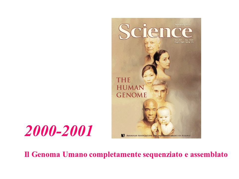 2000-2001 Il Genoma Umano completamente sequenziato e assemblato