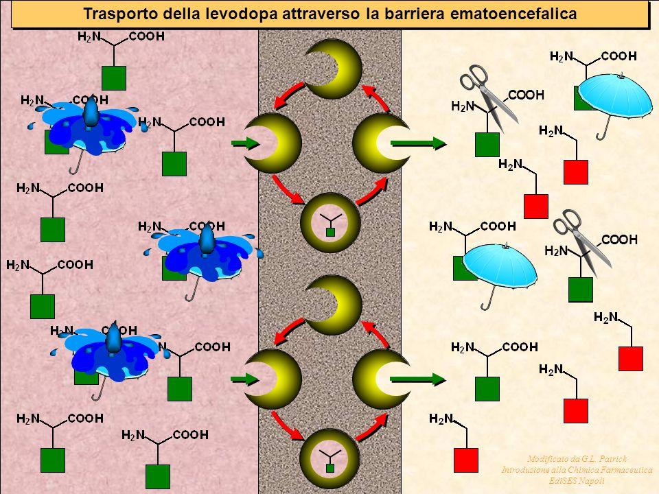 Trasporto della levodopa attraverso la barriera ematoencefalica