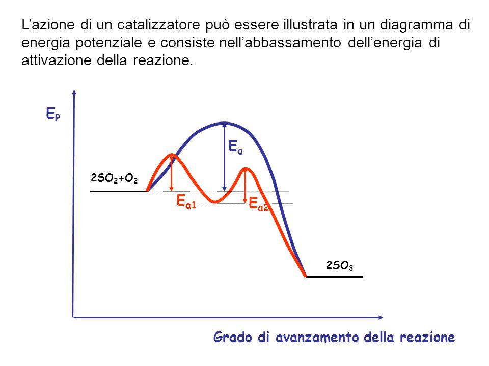 L'azione di un catalizzatore può essere illustrata in un diagramma di energia potenziale e consiste nell'abbassamento dell'energia di attivazione della reazione.