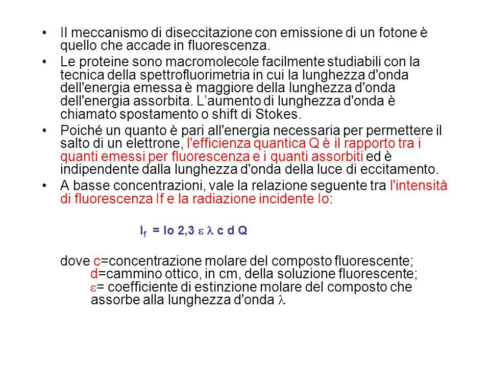Il meccanismo di diseccitazione con emissione di un fotone è quello che accade in fluorescenza.