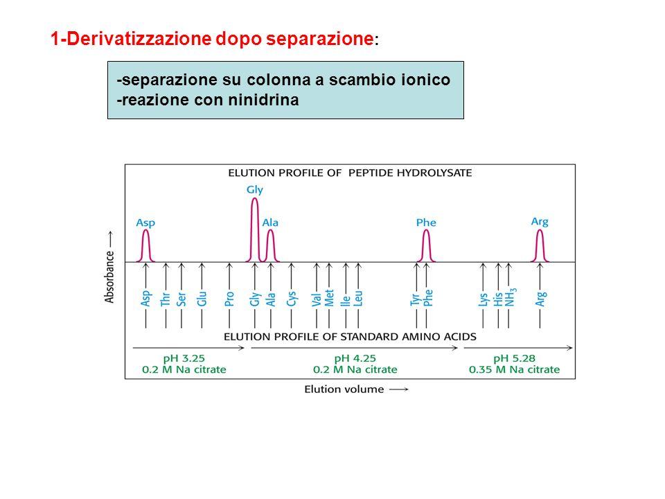 1-Derivatizzazione dopo separazione: