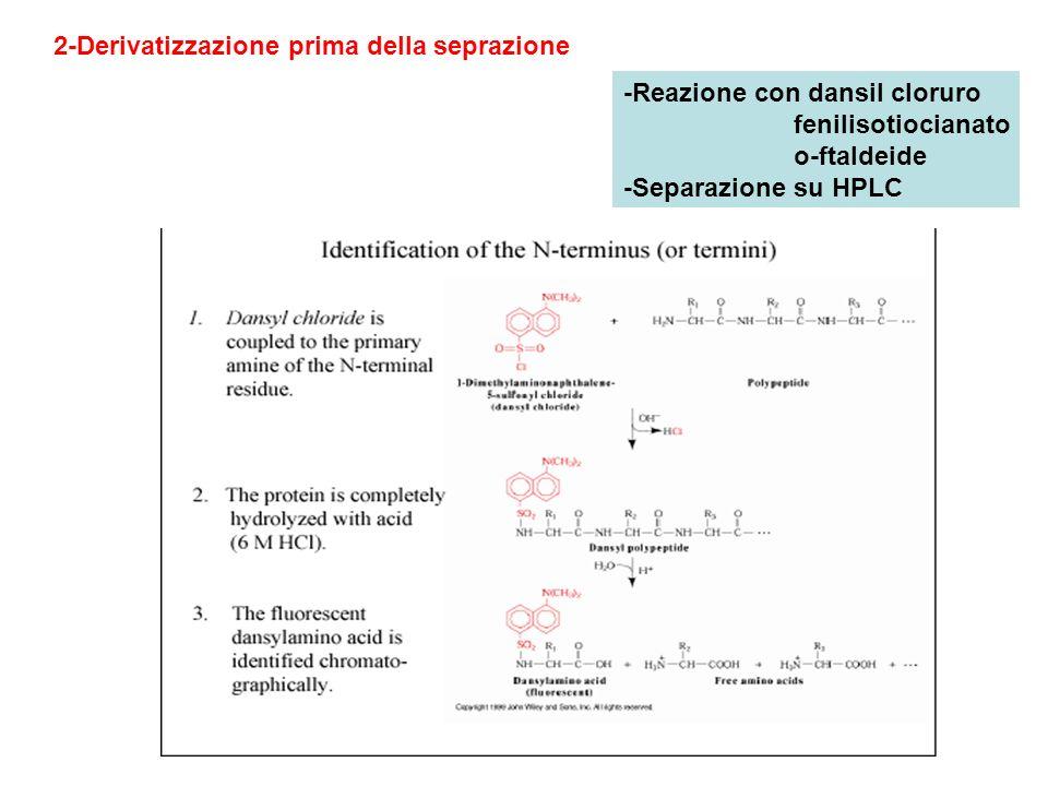 2-Derivatizzazione prima della seprazione