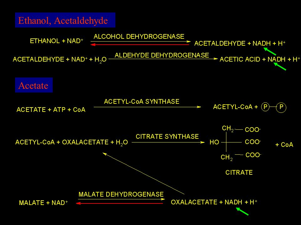 Ethanol, Acetaldehyde Acetate