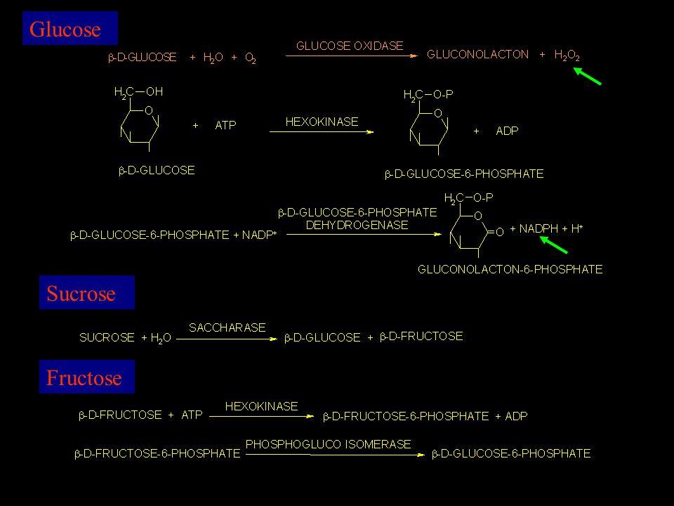 Glucose Sucrose Fructose