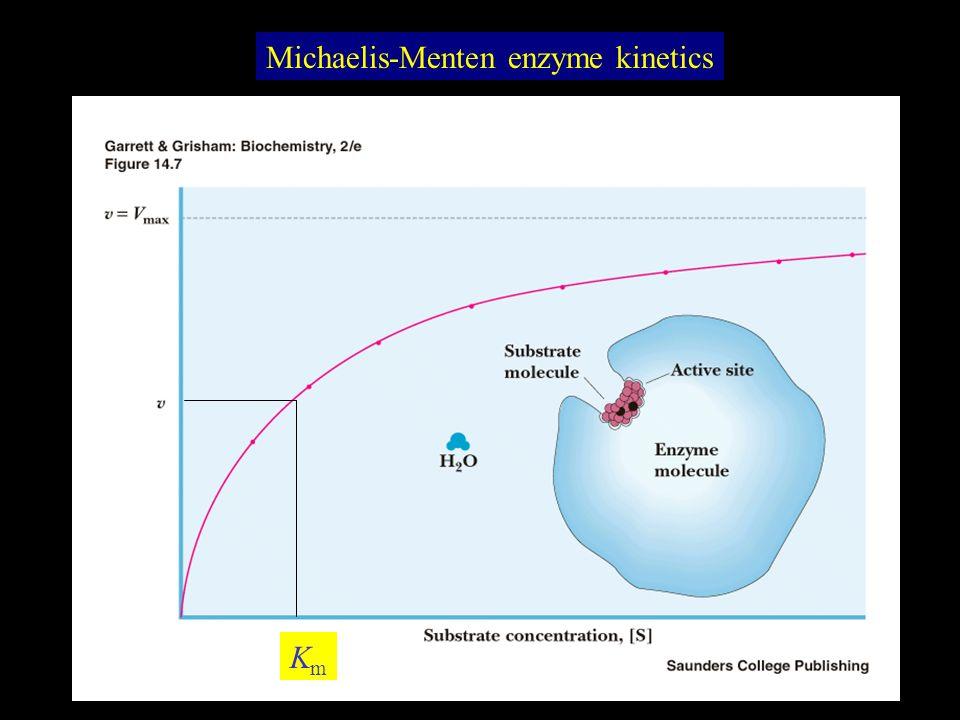 Michaelis-Menten enzyme kinetics