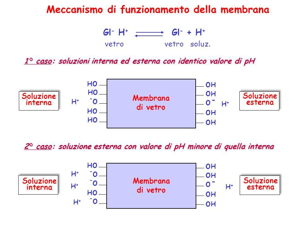 Meccanismo di funzionamento della membrana