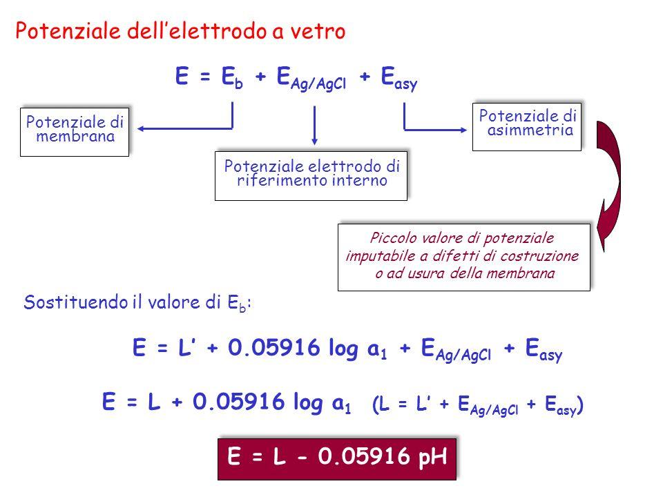 Potenziale dell'elettrodo a vetro