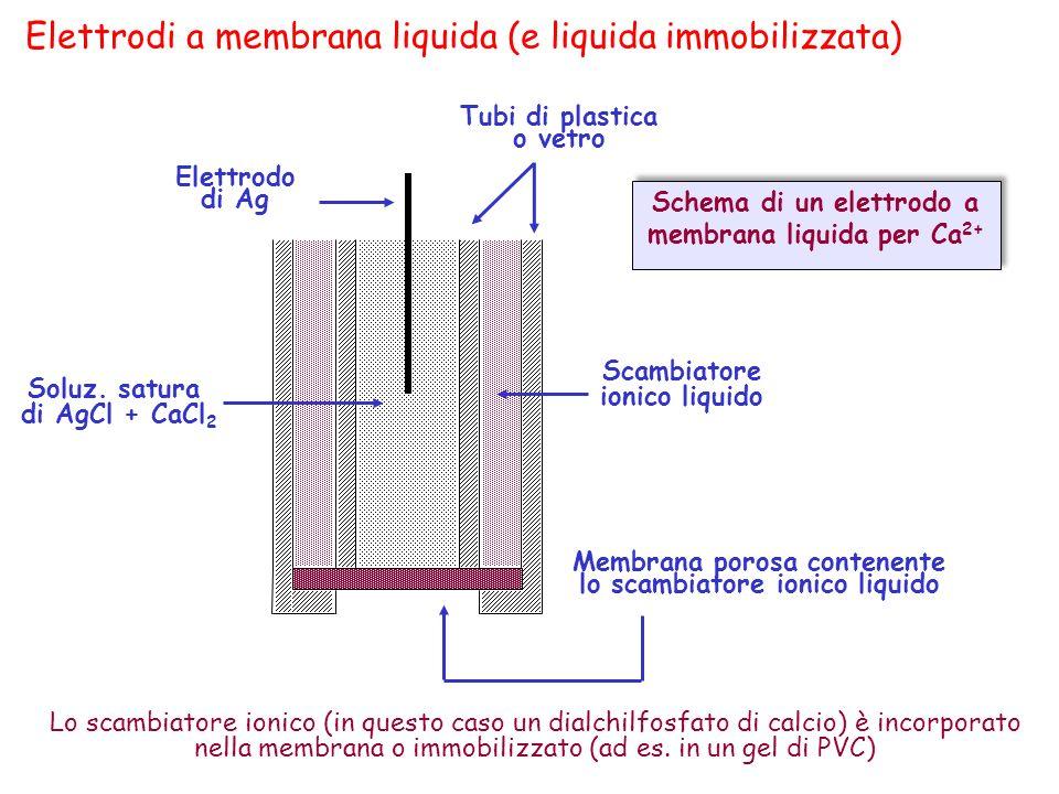 Elettrodi a membrana liquida (e liquida immobilizzata)