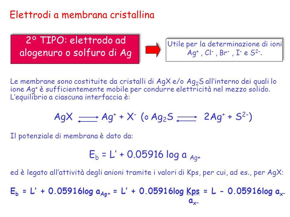 Elettrodi a membrana cristallina