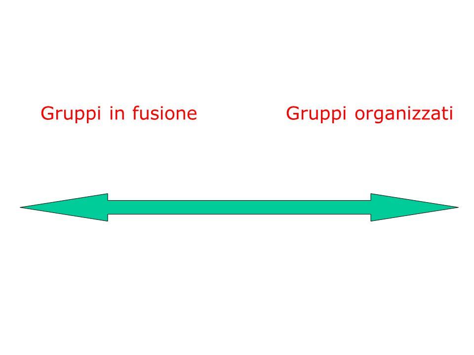 Gruppi in fusione Gruppi organizzati