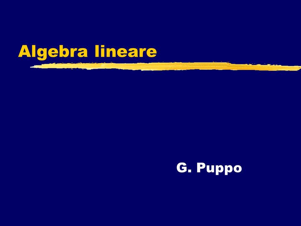 Algebra lineare G. Puppo