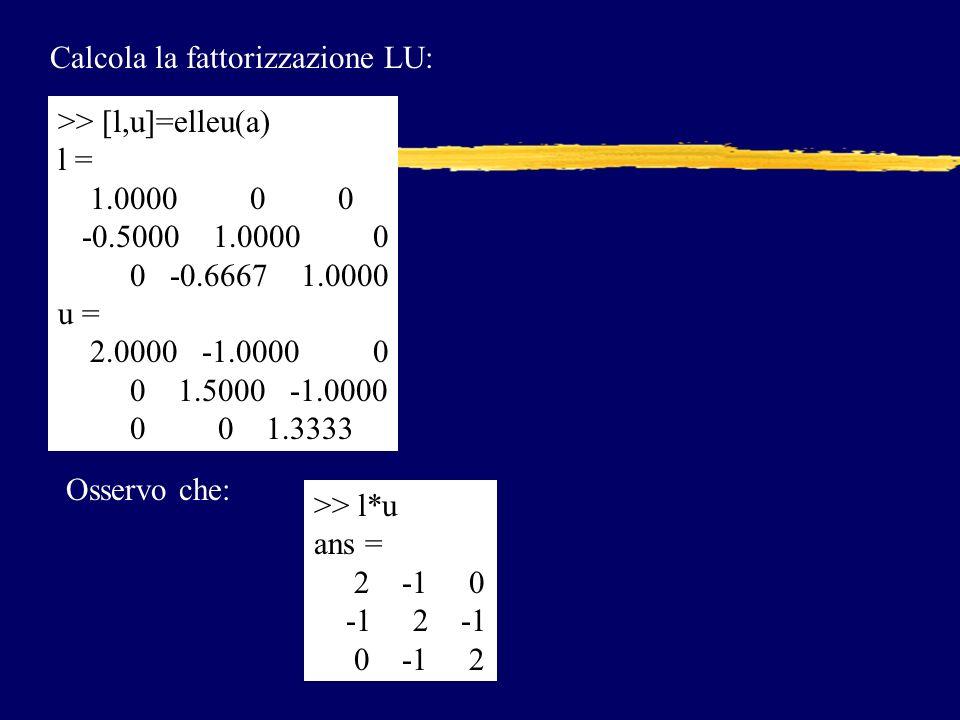 Calcola la fattorizzazione LU: