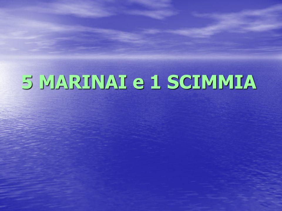 5 MARINAI e 1 SCIMMIA