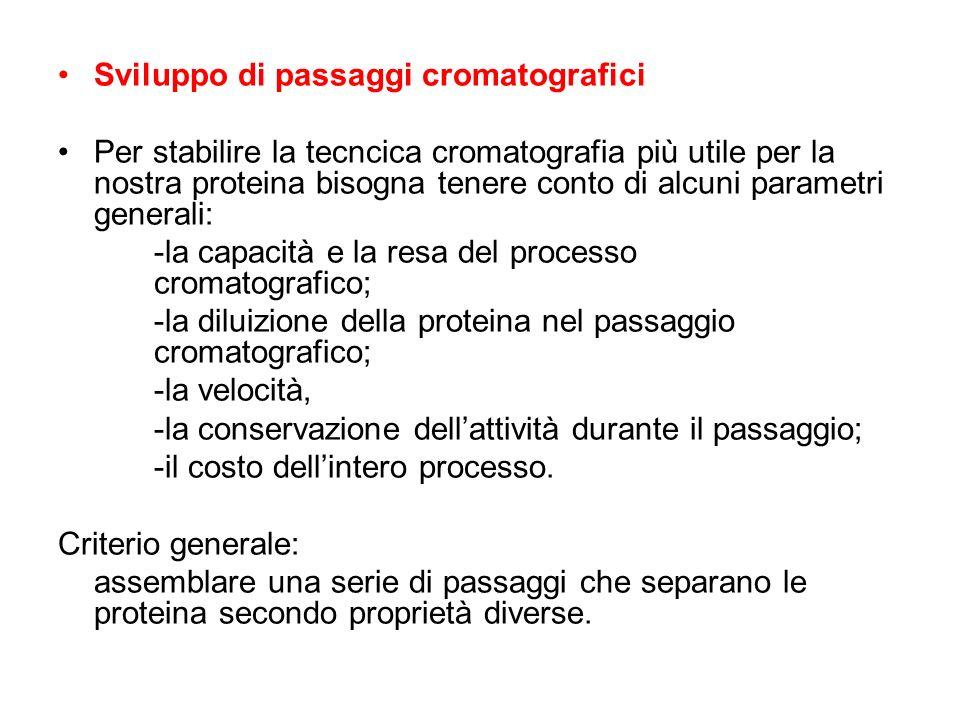 Sviluppo di passaggi cromatografici