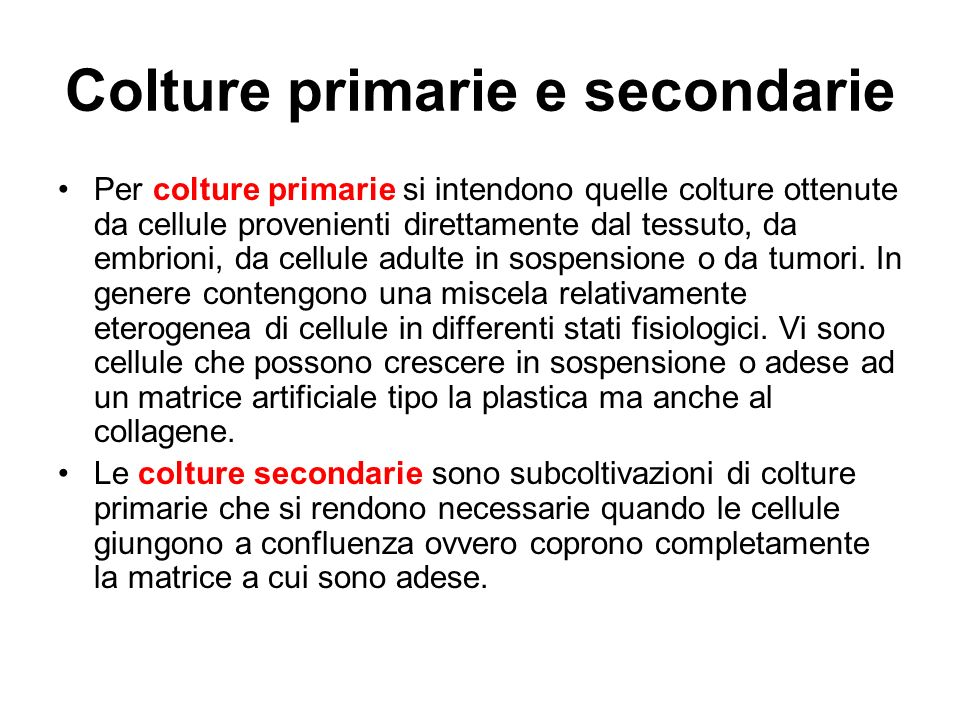 Colture primarie e secondarie