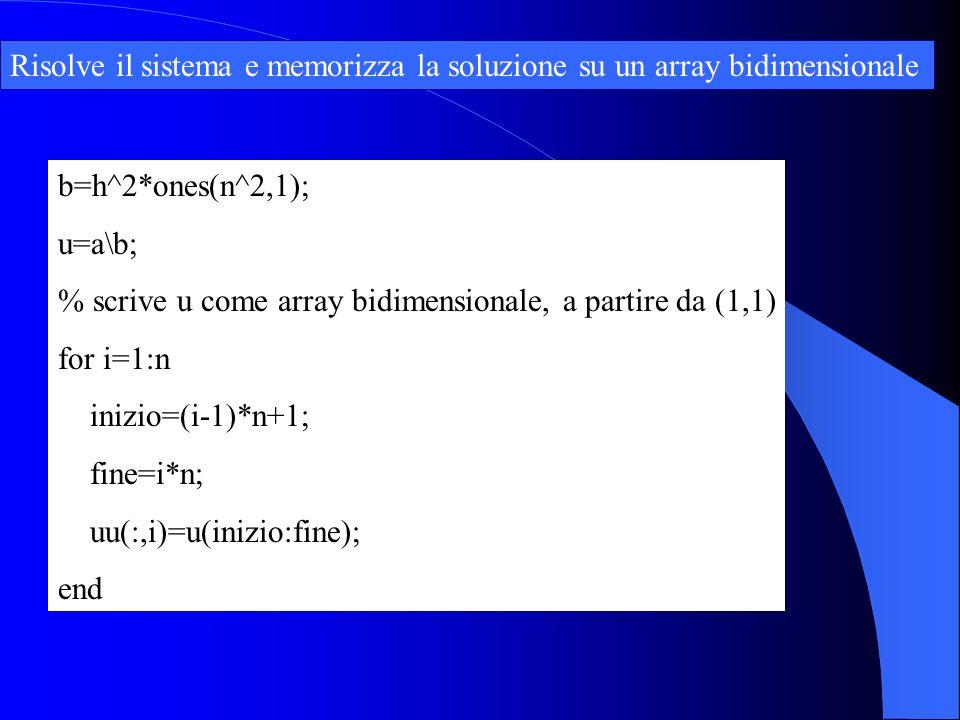 Risolve il sistema e memorizza la soluzione su un array bidimensionale