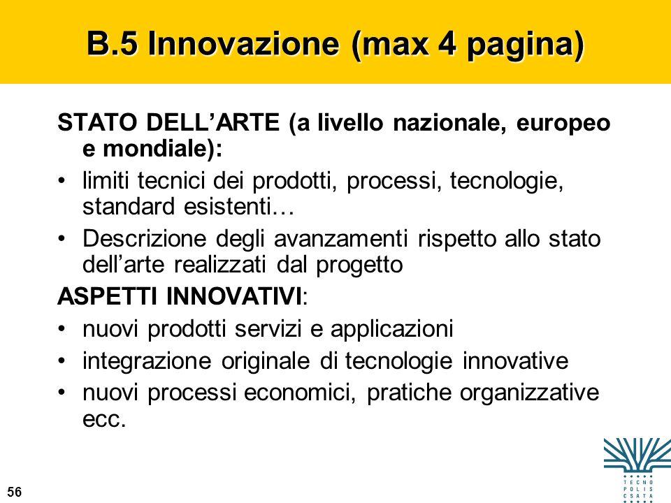 B.5 Innovazione (max 4 pagina)
