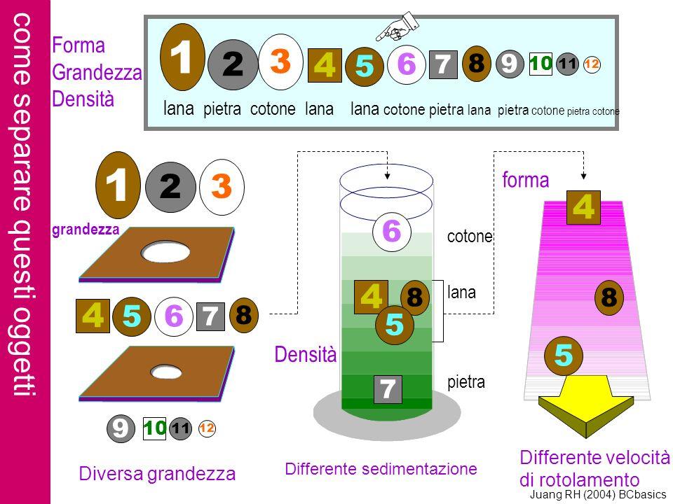 1 1 3 2 4 2 3 4 4 4 come separare questi oggetti 6 5 6 5 6 5 5 7 8 9 8