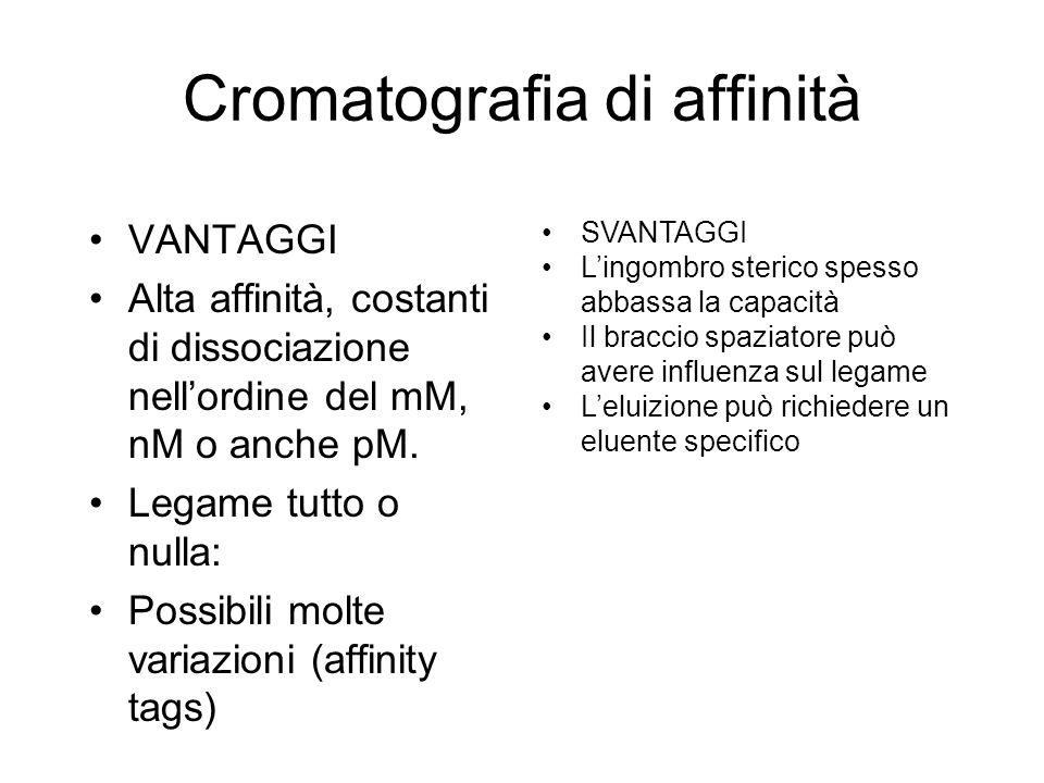 Cromatografia di affinità