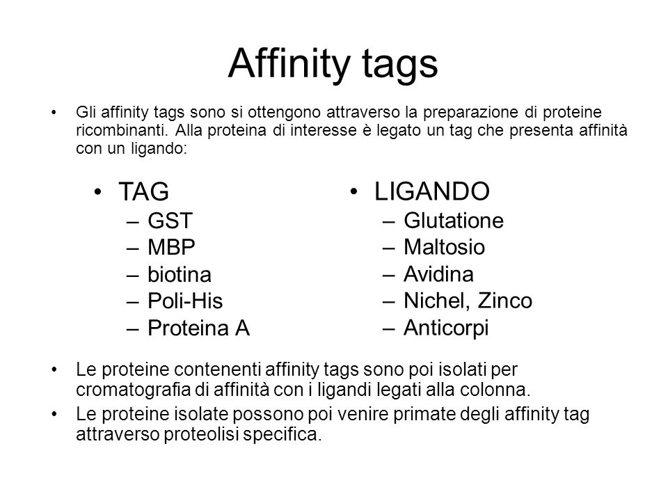 Affinity tags TAG LIGANDO GST MBP biotina Poli-His Proteina A