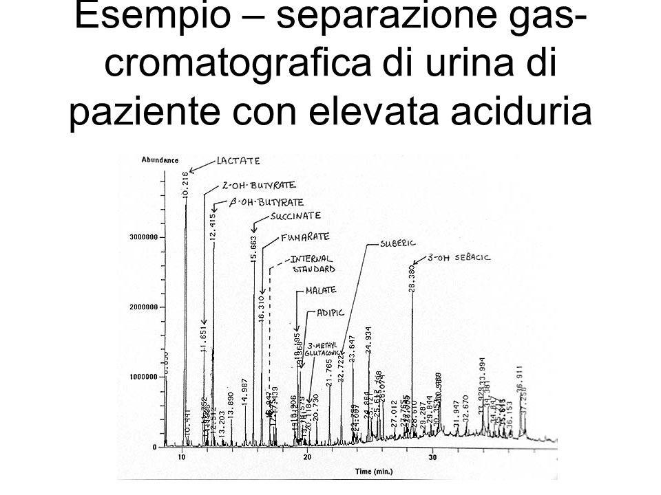 Esempio – separazione gas-cromatografica di urina di paziente con elevata aciduria