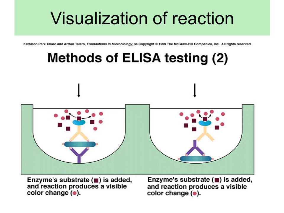 Visualization of reaction