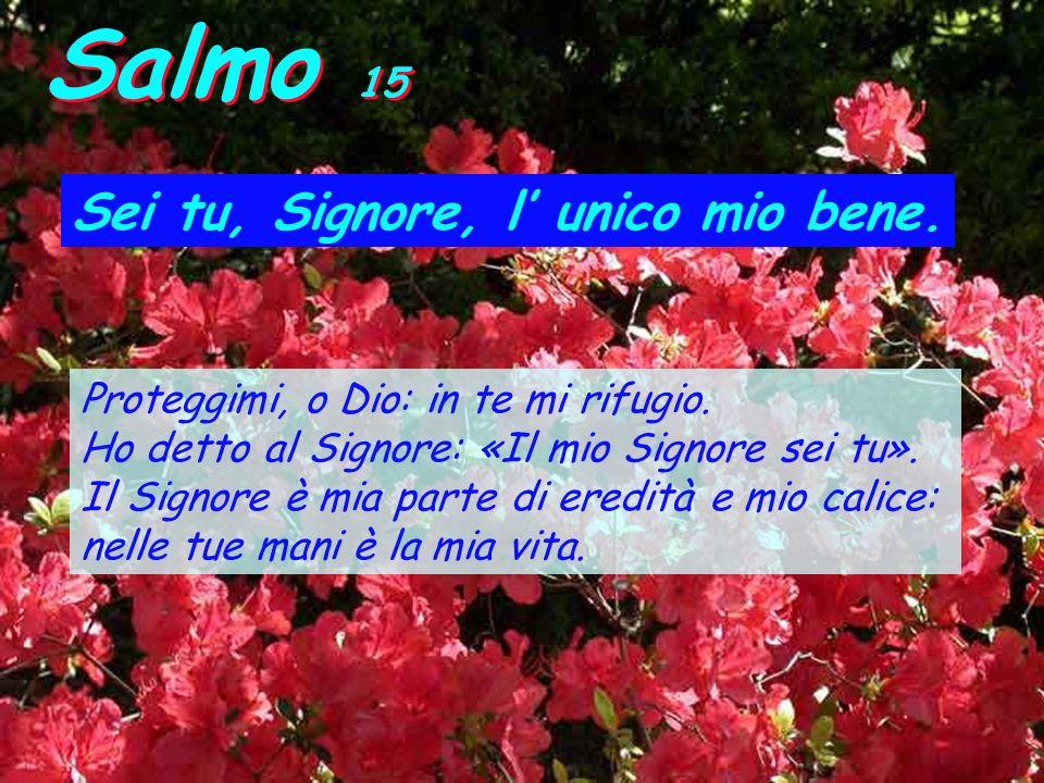 Salmo 15 Sei tu, Signore, l' unico mio bene.