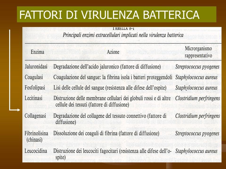FATTORI DI VIRULENZA BATTERICA